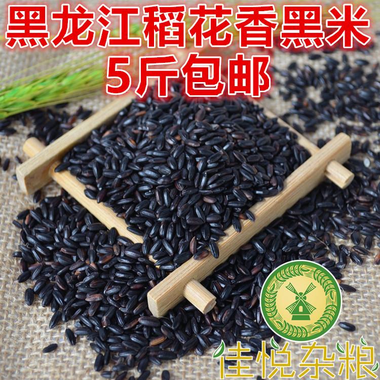 19年新货 黑龙江五常黑香米 生黑米 五谷杂粮 非紫米500g 5件包邮