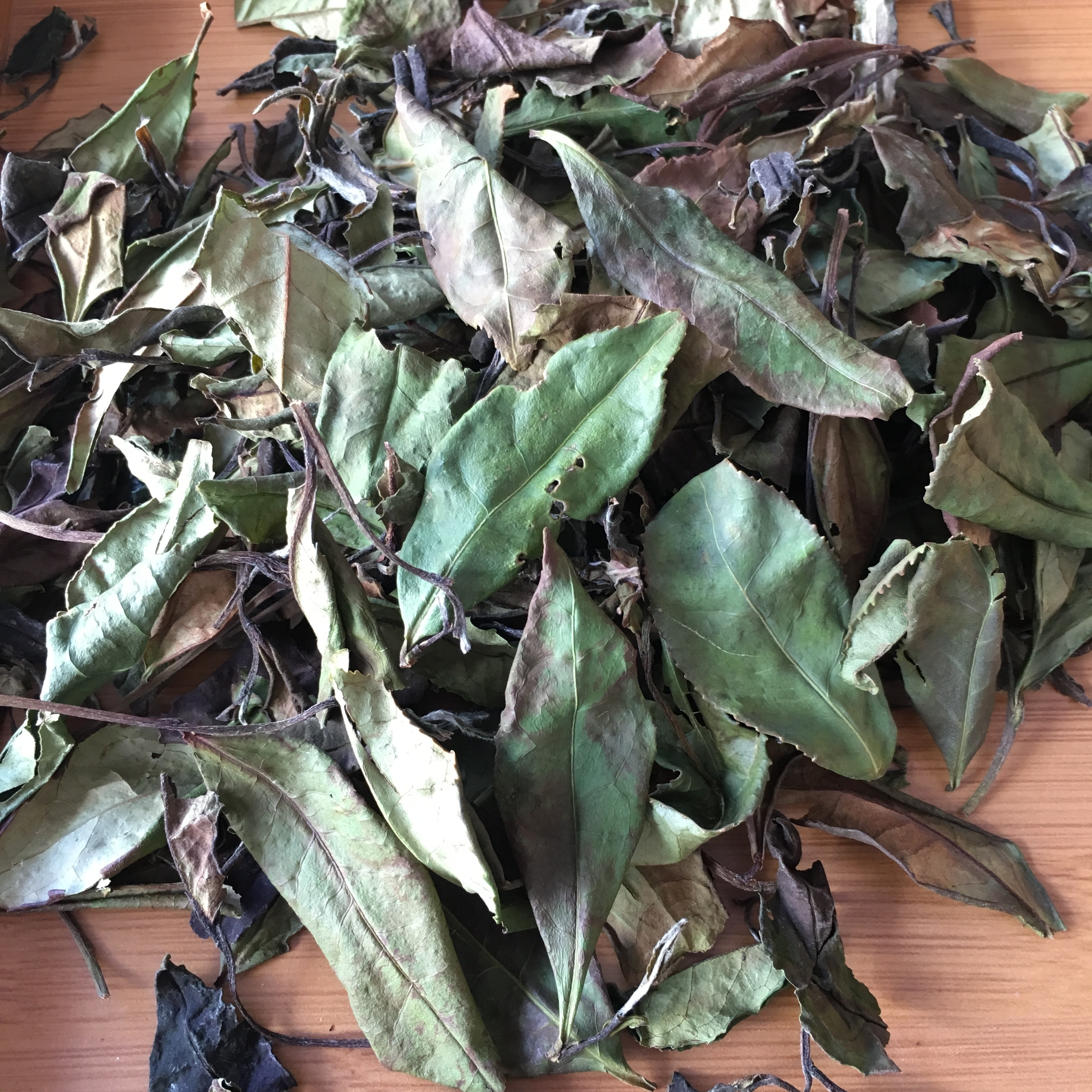 野生自然晾晒政和白茶散装寿眉高山区海拔云雾小种茶手工做收藏煮