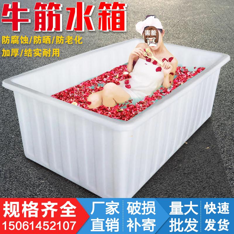 加厚牛筋塑料水箱长方形家用大号水桶储水箱水产养殖养鱼养龟水槽