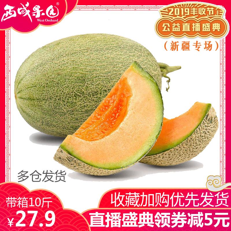 新疆哈密瓜新鲜一箱10斤左右吐鲁番大网纹瓜甜瓜当季水果批发包邮