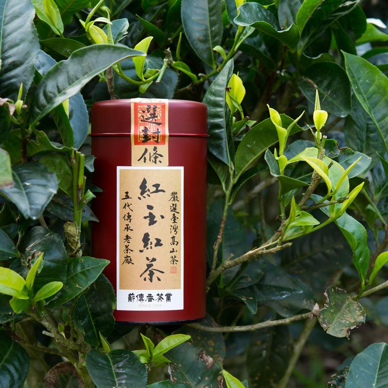 薪传香 进口台湾高山茶 台湾红茶 日月潭红玉红茶台茶18号50g