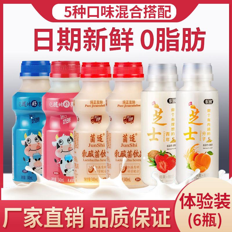 乳酸菌饮料原味草莓340ml*12瓶牛奶早餐饮品图片
