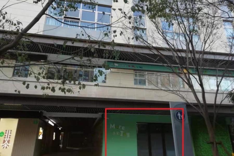 上海市青浦区盈浦街道盈清路56、58号的房地产