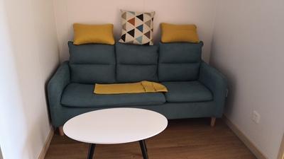 沙发小户型简约现代出租房小公寓客厅小沙发三人布艺沙发北欧风格