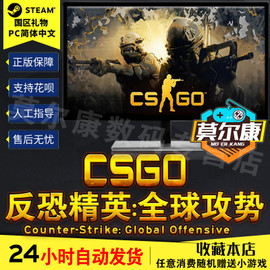 好友礼物 pc中文steam CS GO csgo 反恐精英全球攻势 csgo csgo steam游戏