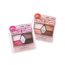 Canmake/Minefield Perfectly Carved 5-Colour Eye Shadows