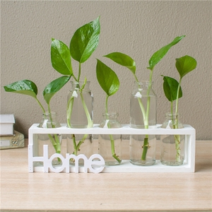 Creative hydroponic vase transparent glass small fresh personality decoration living room table decorations green dill p