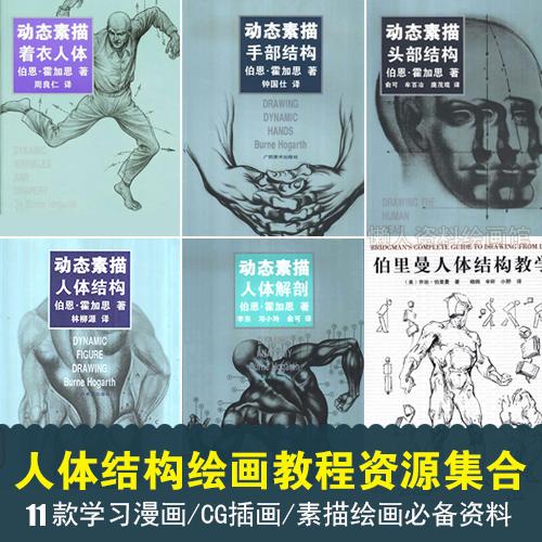 动态素描人体结构 头部骨骼肌肉解剖 手部衣着CG漫画学习资源集合