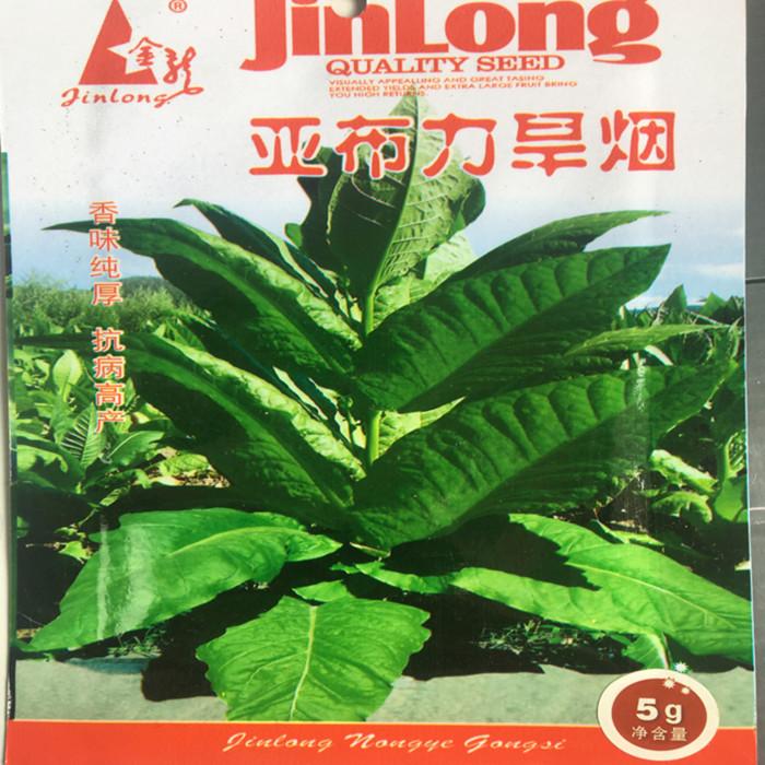 旱烟烟种关东烟种子亚布力旱烟种子东北庭院叶菜园饶河农作物种籽