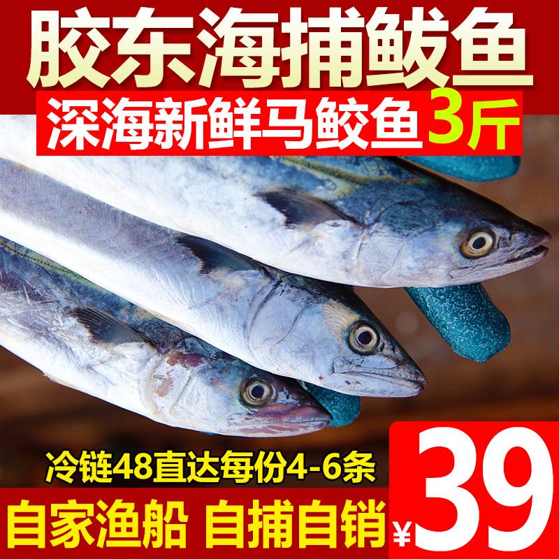 竞泽 胶东海捕马鲛鱼 3斤约4-6条