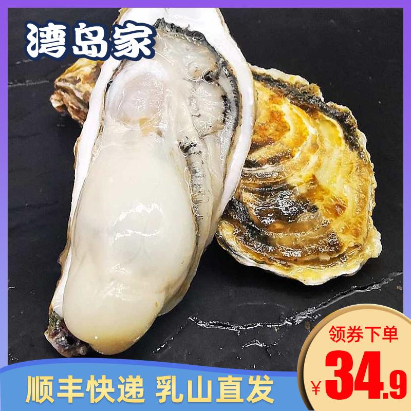 湾岛家 乳山牡蛎鲜活生蚝 5斤
