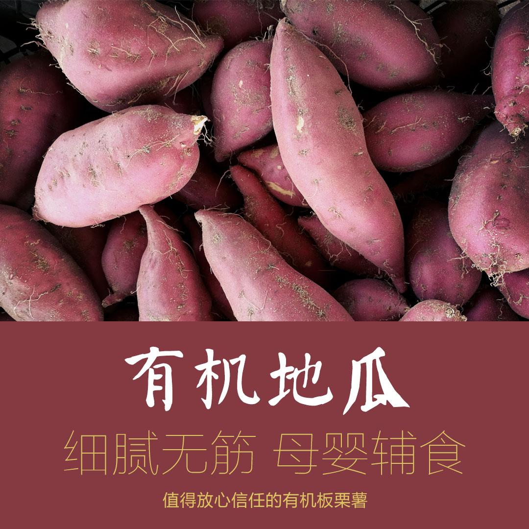 源薯海头地瓜有机日本粉糯甜无筋红薯板栗蜜薯海南沙地小香薯5斤