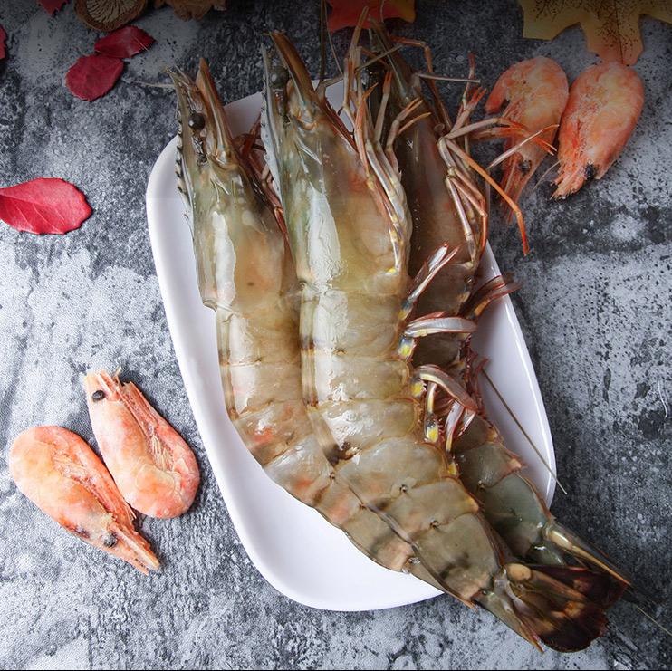 黑虎虾鲜活超大 新鲜速冻斑节虾海鲜大虾越南虎虾500g 20-25只/盒