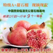 特级大果 临潼骊山硬籽大 新鲜水果精选礼盒 单果(9两-1斤)*9