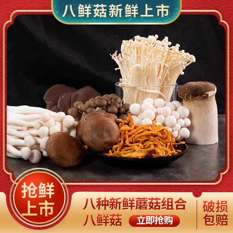 南叶 八种鲜蘑菌菇组合装 1000g
