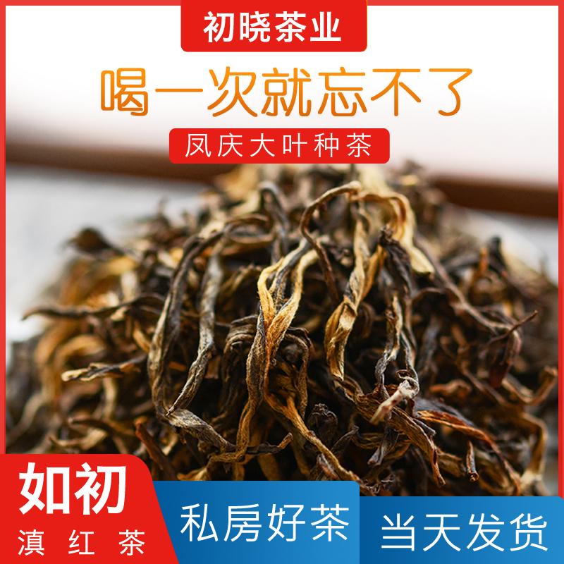 初晓茶叶滇红茶浓香型散装云南凤庆古树滇红非特级礼盒装春茶茶叶