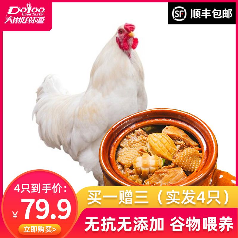 大用好味道 农家散养走地鸡 730g*4只
