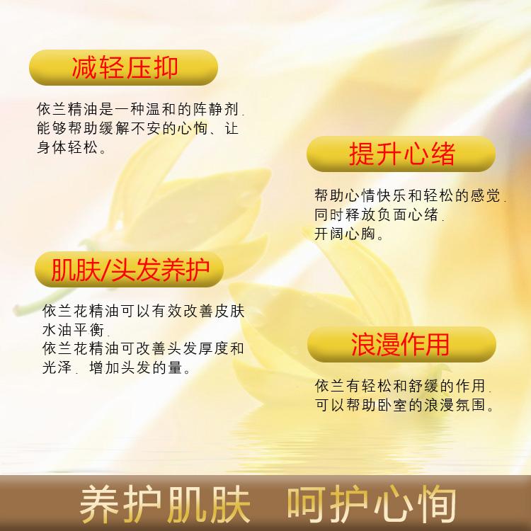 依兰依兰精油100ML护发 Ylang oil情趣香薰油身体按摩依兰花油