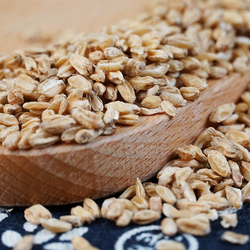 浮小麦500g中药材浮小麦茶可搭止汗产品泡茶非同仁堂可搭甘草大枣