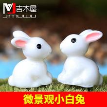 微景观摆件 小耳朵小白兔 兔子  树脂工艺品摆件配件