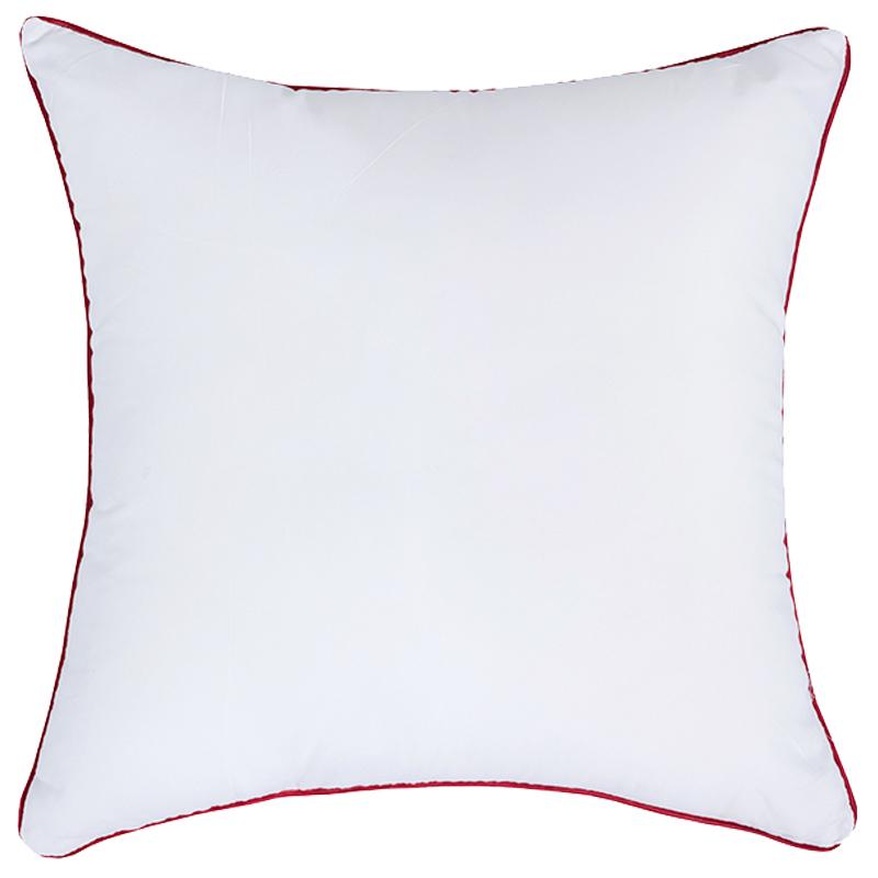 抱枕芯沙发靠枕枕芯靠垫芯40 45 50 55 60 70 正方形芯子内胆内芯