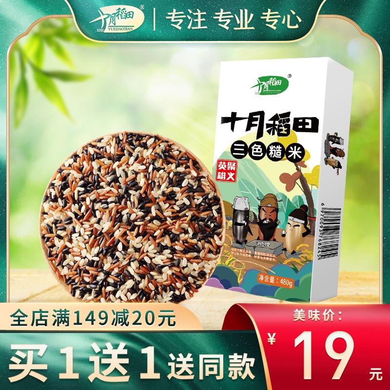 十月稻田 轻食三色糙米480g*2袋