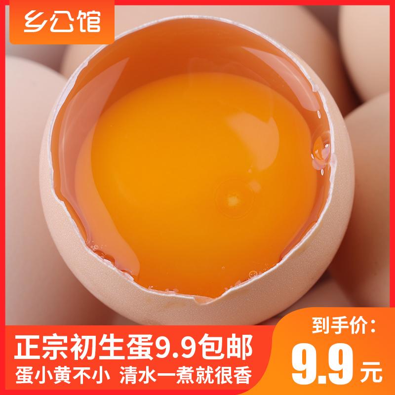 乡公馆 农家散养新鲜初生蛋 10枚