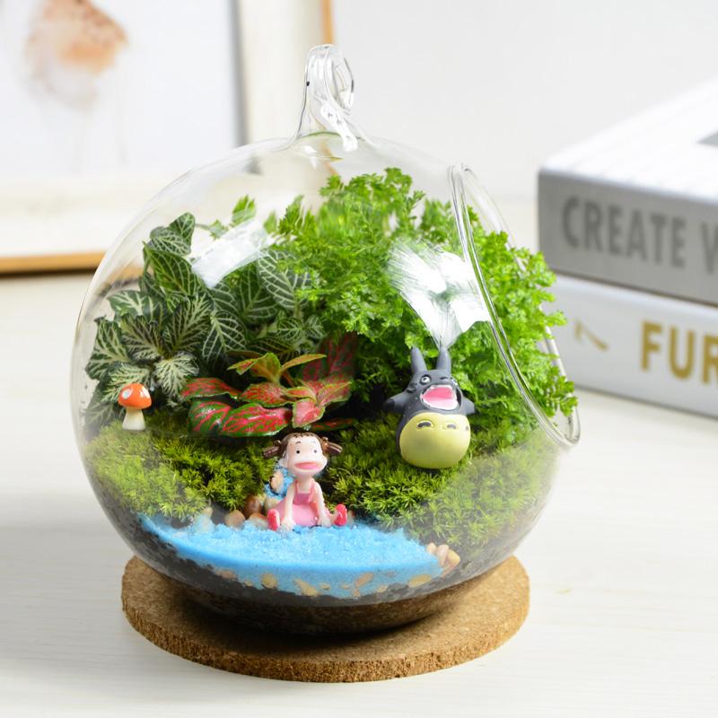 创意盆栽苔藓微景观绿植迷你盆栽办公桌植物摆件DIY盆栽生日礼物