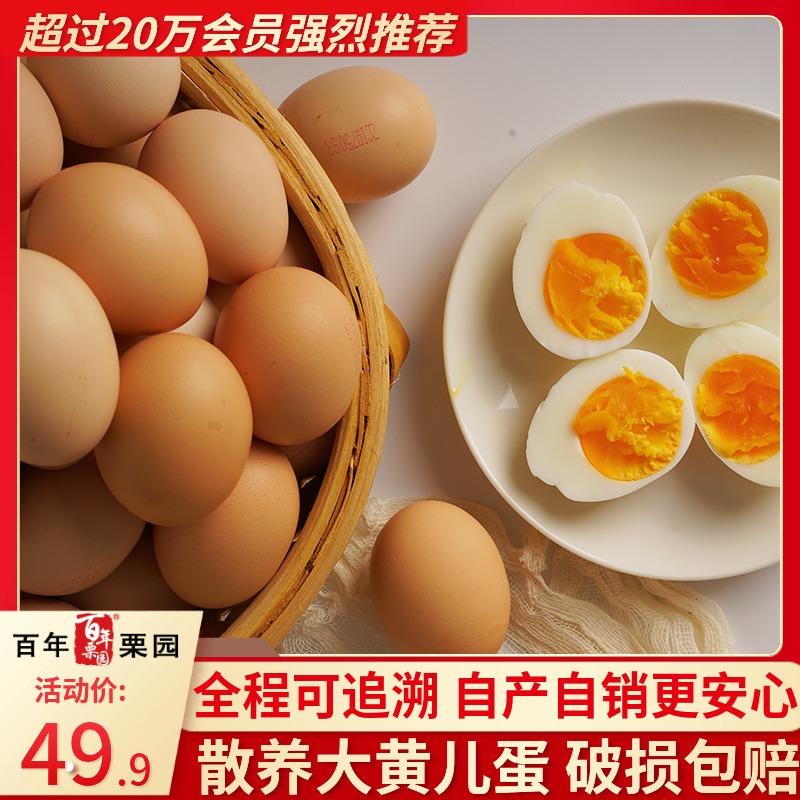 首农百年栗园散养新鲜土鸡蛋30枚 柴鸡蛋林地散养鲜发当日蛋