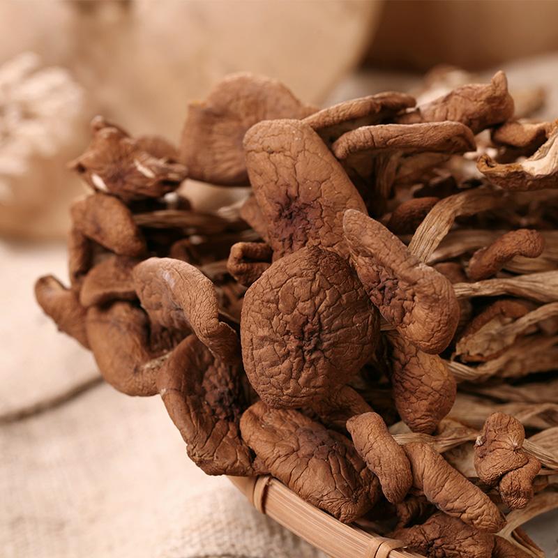 鑫悦农产 茶树菇干货不开伞 农家自产500g 香嫩 剪脚 茶树菇包邮