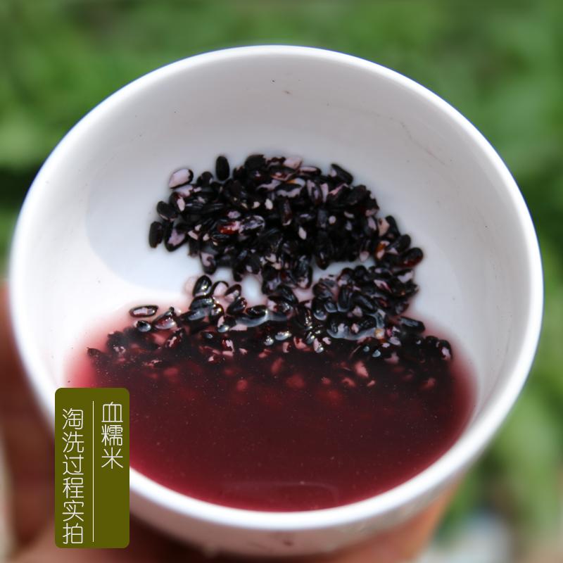 新米贵州血糯米1500g农家自产生态紫糯米粽子米杂粮可做酒酿粗粮