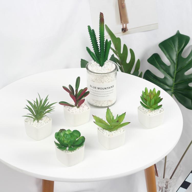 北欧ins仿真多肉盆栽植物绿植拍照道具创意家居装饰仙人掌花摆件