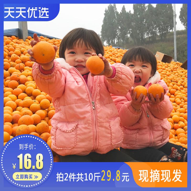 新鲜橙橘橙子5斤当季水果脐橙冰糖橙果冻橙血橙橘子桔子拍2件10斤