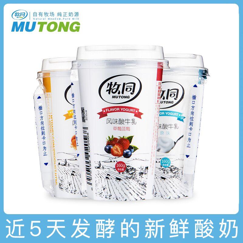 牧同低温酸奶整箱早餐益生菌酸奶杯装160g*12黄桃燕麦风味酸牛奶