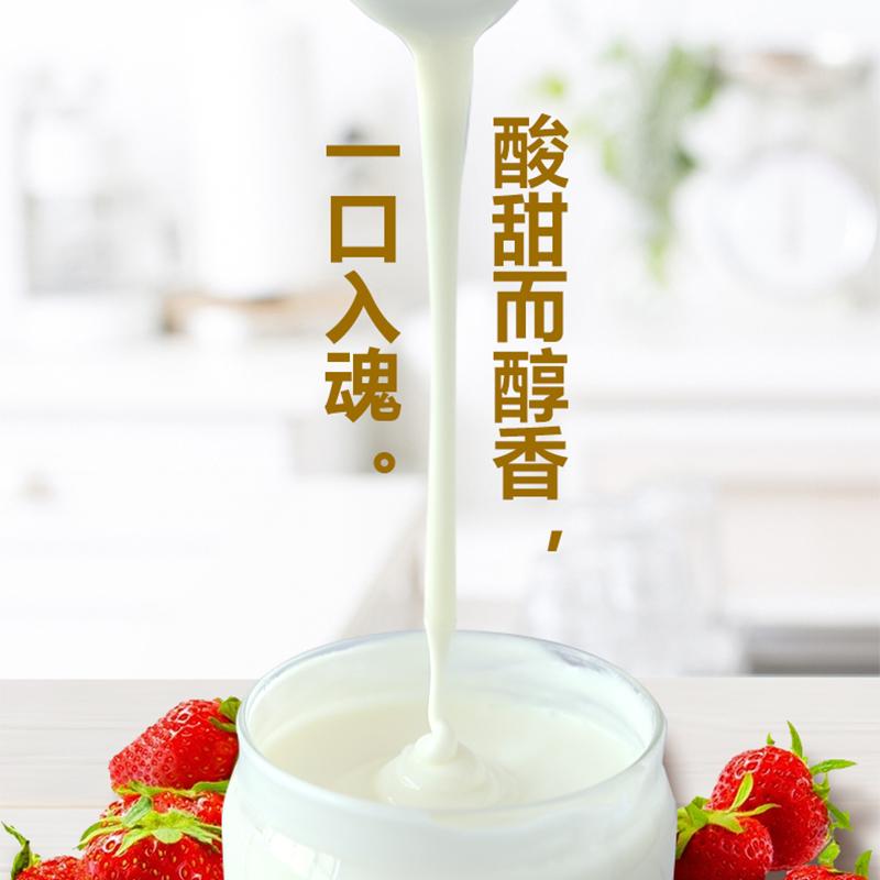 全自动酸奶机家用自制迷你宿舍发酵小型多功能玻璃分杯纳豆米酒