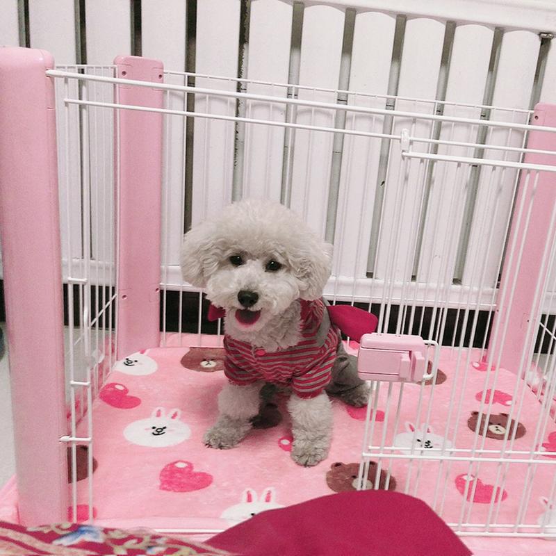 日本爱丽丝狗围栏爱丽思猫狗笼子中小犬泰迪比熊斗牛宠物室内栅栏