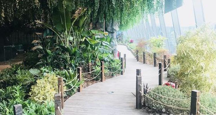 上海JOLI Zoo茱莉动物园