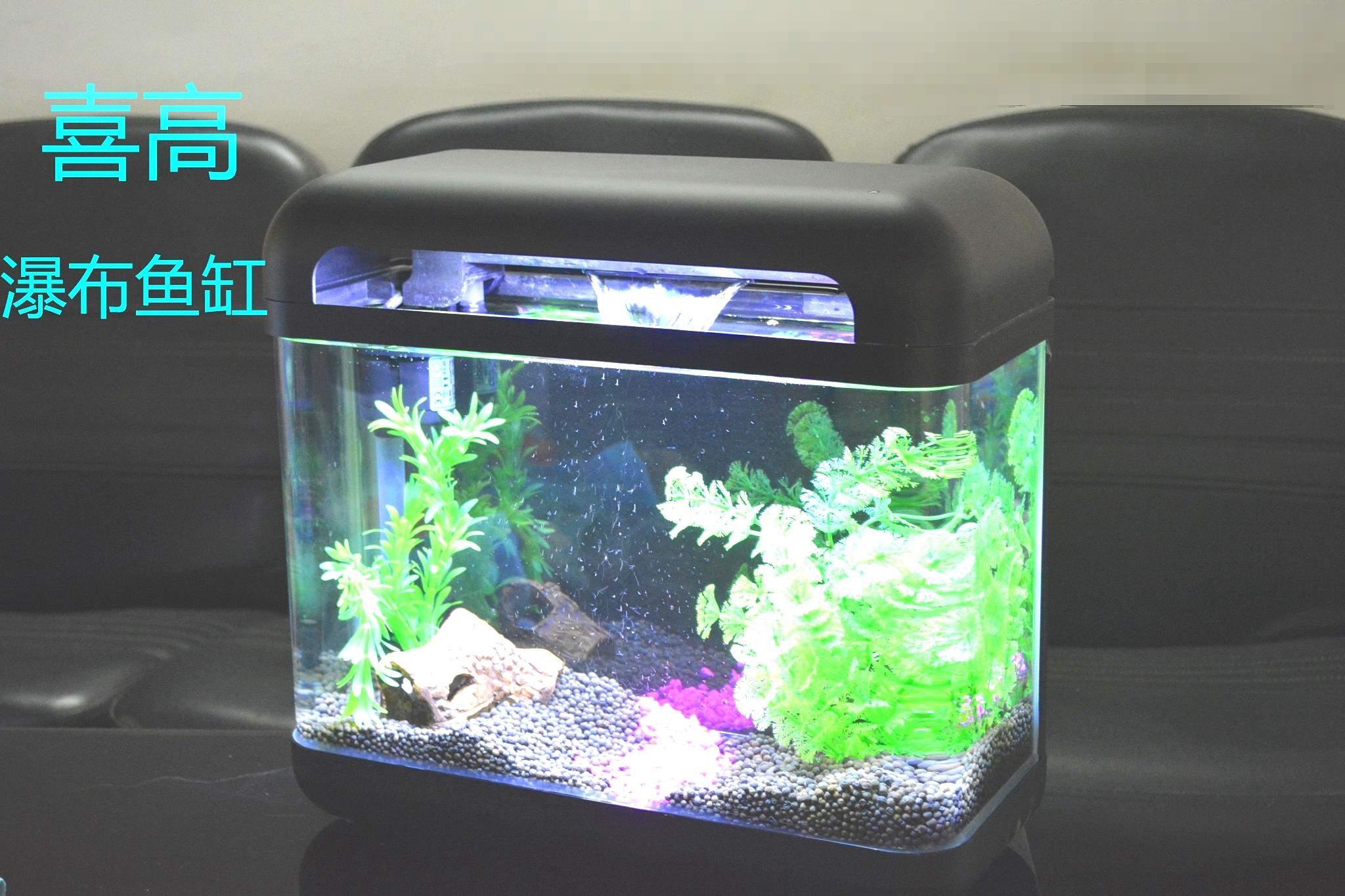 桌面鱼缸生态水族箱