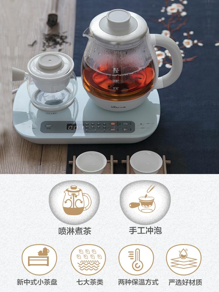 小熊多功能煮茶壶0.8L加厚玻璃蒸汽泡茶养生壶办公普洱黑茶煮茶器