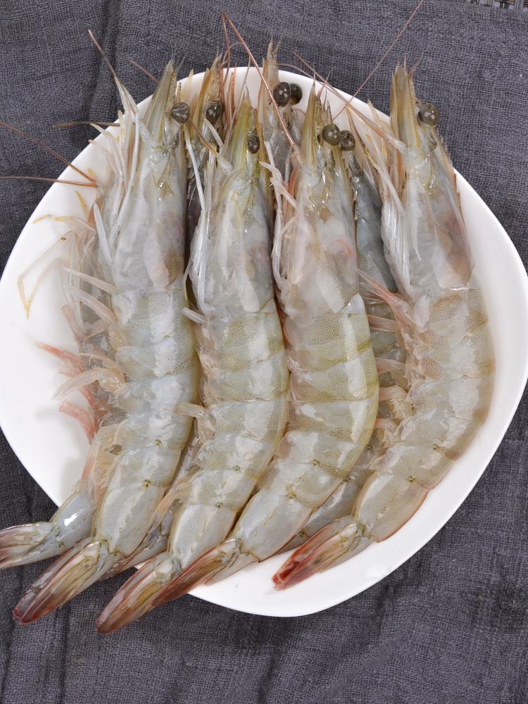 青岛大虾鲜活基围虾超大活虾冻虾对虾海虾海鲜水产鲜虾青虾4斤