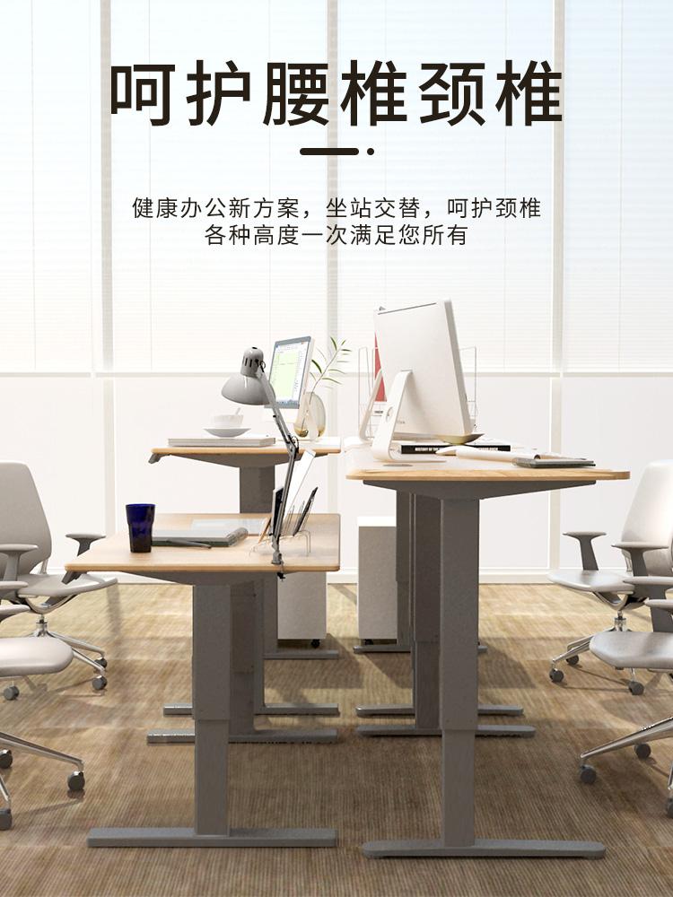 乐歌电动升降桌学习亲子桌站立办公书桌电脑台式桌升降书桌移动桌
