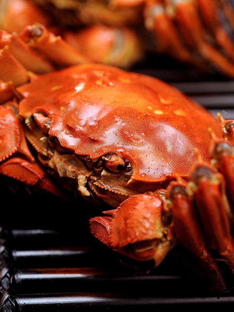 蟹品仙阳澄湖大闸蟹鲜活现货公4.5两全母3.5两顺丰六月黄特大螃蟹
