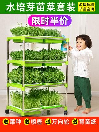 豆芽菜育苗盘无土栽培水培蔬菜发芽盆芽苗菜种植机小麦豆苗种子籽