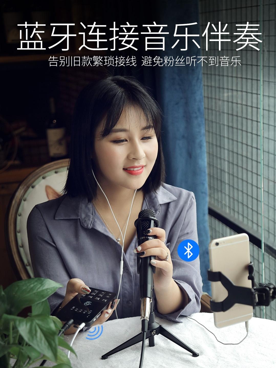 蔡琴 F10主播外置声卡套装手机喊电容麦克风 电脑台式快手抖音户外直播唱歌设备全套