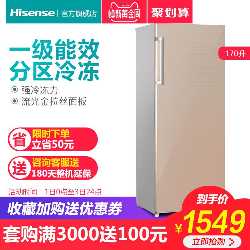 Hisense-海信 BD-170-A 立式冰柜家用小型大冷冻柜商用冷柜保鲜柜