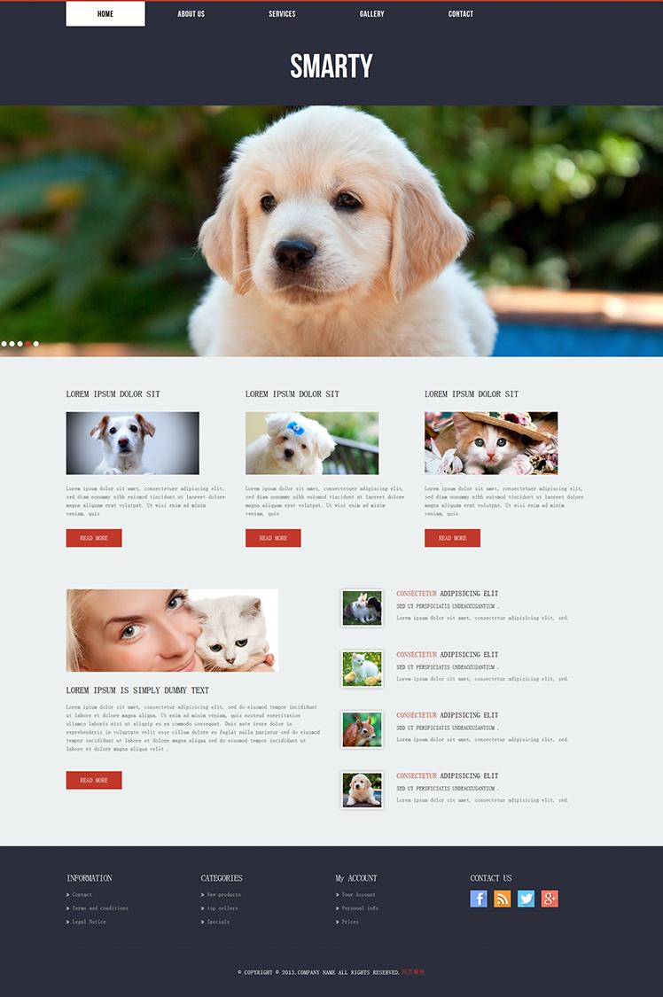 国外前端设计 宠物店 狗狗服装 狗粮 销售网站 div+css3静态模板