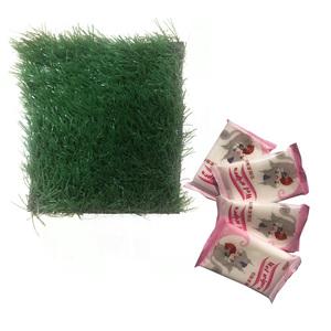 绿植墙仿真植物墙装饰客厅室内背景花墙面绿色壁挂塑料假草坪阳台