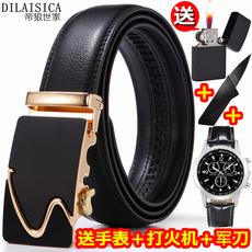 Belt Dilasica R series