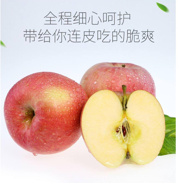 美逛商城,好货,陕西苹果 . 美逛商城好货——陕西苹果