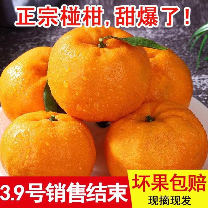 【现摘现发】四川自贡椪柑芦柑晚熟超甜10斤装